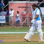 Cup Match Day 2 Bermuda, August 3 2018-2951