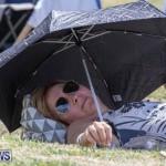 Eastern County Game Flatts Victoria Cleveland Bermuda, August 18 2018-8814