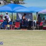 Eastern County Game Flatts Victoria Cleveland Bermuda, August 18 2018-8874