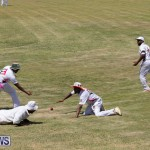 Eastern County Game Flatts Victoria Cleveland Bermuda, August 18 2018-8974