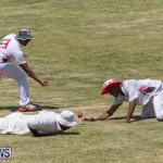 Eastern County Game Flatts Victoria Cleveland Bermuda, August 18 2018-8975