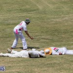 Eastern County Game Flatts Victoria Cleveland Bermuda, August 18 2018-8980