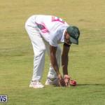 Eastern County Game Flatts Victoria Cleveland Bermuda, August 18 2018-9196
