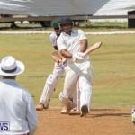 Eastern County Game Flatts Victoria Cleveland Bermuda, August 18 2018-9538