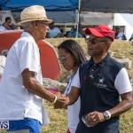 Eastern County Game Flatts Victoria Cleveland Bermuda, August 18 2018-9802