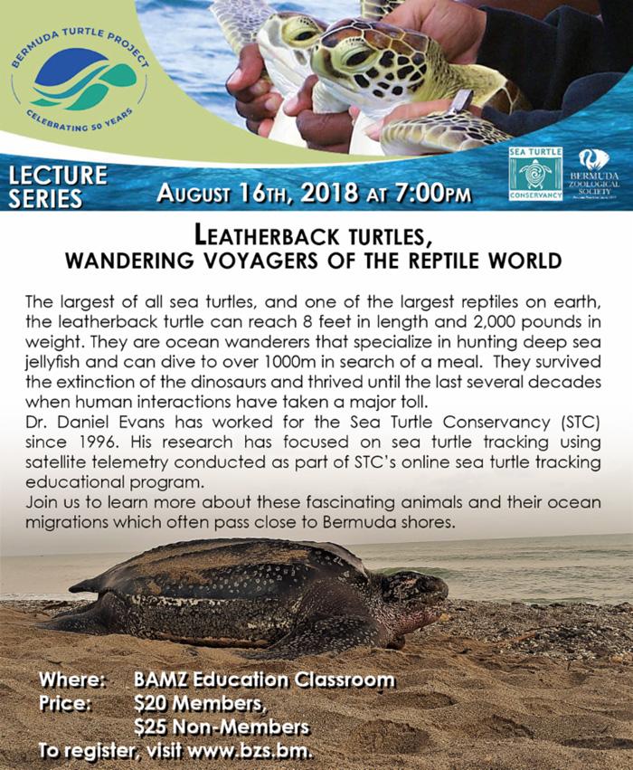 Leatherback turtles lecture Bermuda August 2018