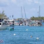 Mangrove Bay Raft Up Bermuda, August 5 2018-6067