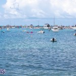 Mangrove Bay Raft Up Bermuda, August 5 2018-6077