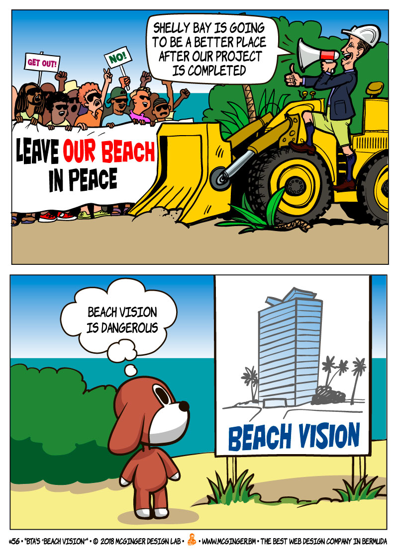 McGinger beach vision 800