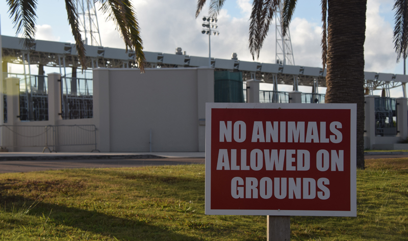 NSC no animals Bermuda August 20 2018