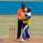 One Communications Championship Cup Premier Division Rangers vs St Davids at Wellington Oval Bermuda, August 12 2018-7153