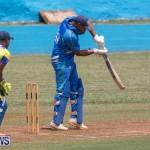 One Communications Championship Cup Premier Division Rangers vs St Davids at Wellington Oval Bermuda, August 12 2018-7350