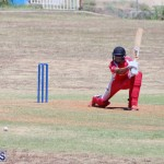 cricket Bermuda August 29 2018 (1)