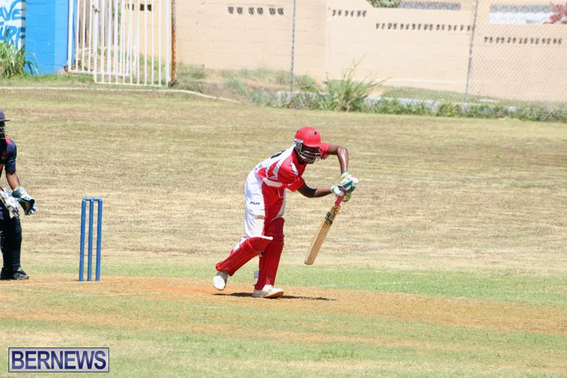 cricket-Bermuda-August-29-2018-12