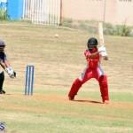 cricket Bermuda August 29 2018 (13)