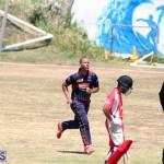 cricket Bermuda August 29 2018 (14)