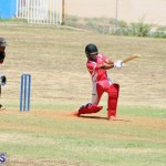 cricket Bermuda August 29 2018 (16)