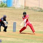 cricket Bermuda August 29 2018 (2)