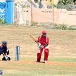 cricket Bermuda August 29 2018 (5)