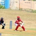 cricket Bermuda August 29 2018 (7)