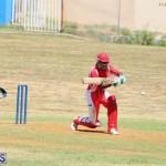 cricket Bermuda August 29 2018 (8)