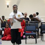 martial arts Bermuda August 22 2018 (14)