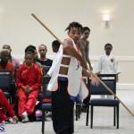 martial arts Bermuda August 22 2018 (15)