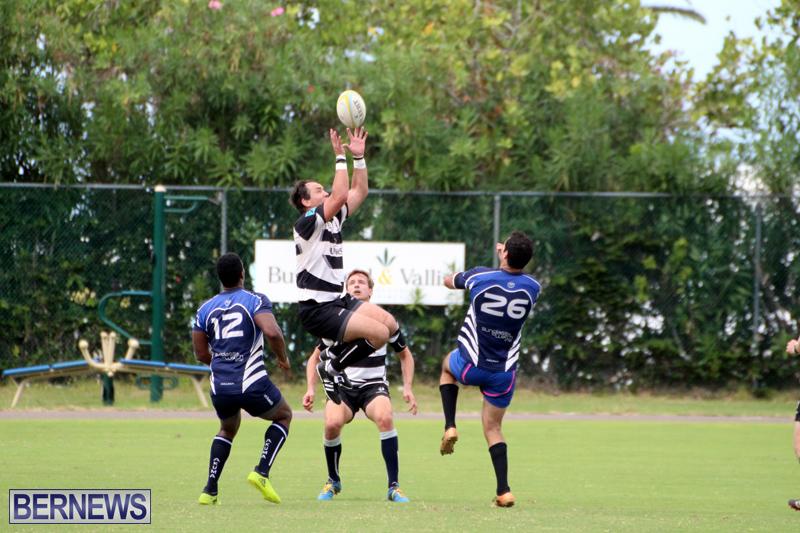 Bermuda-Rugby-September-15-2018-8