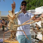 Lobster Tournament Makin Waves Goslings Bermuda, September 2 2018-3843