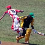 cricket Bermuda Sept 12 2018 (10)