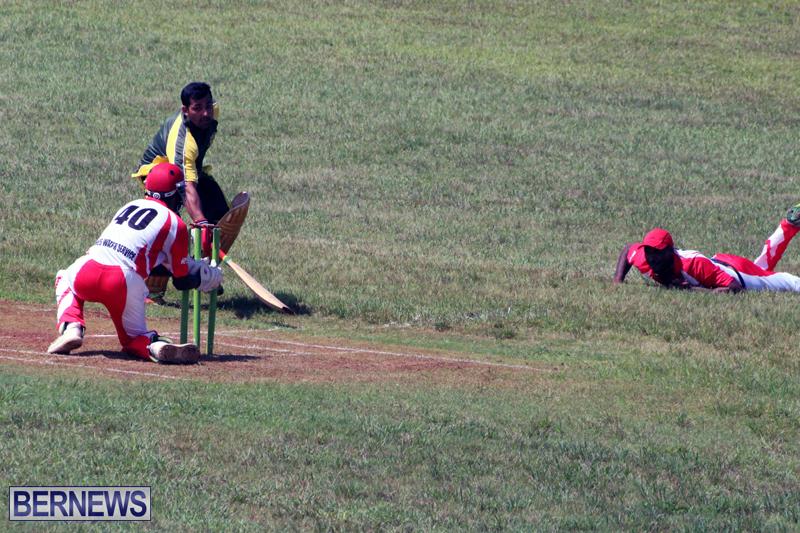 cricket-Bermuda-Sept-12-2018-13