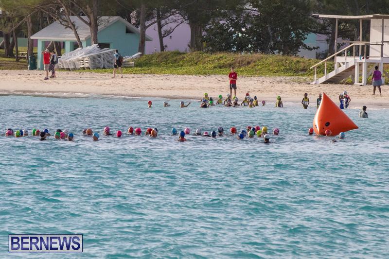 AON-National-Sprint-Triathlon-Bermuda-October-28-2018-1086