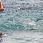 AON National Sprint Triathlon Bermuda, October 28 2018-1115