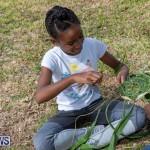 Bermuda National Trust Farm Fest, October 27 2018-0797