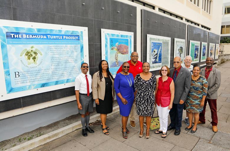 Bermuda Turtle Project October 2018 (2)