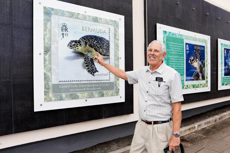 Bermuda Turtle Project October 2018 (3)