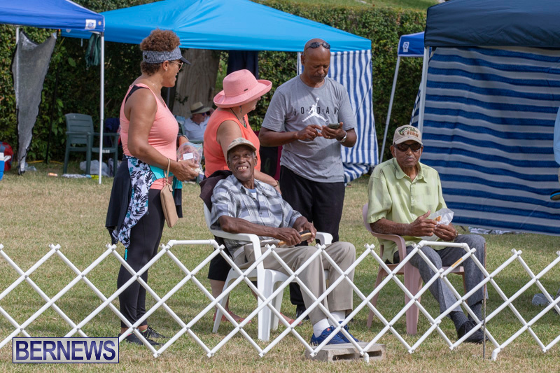 Devils-Isle-All-Breed-Clubs-Bermuda-International-Championship-Dog-Show-October-20-2018-8146