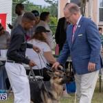 Devil's Isle All Breed Club's Bermuda International Championship Dog Show, October 20 2018-8229