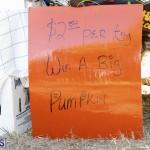 J&J's Pick Your Own Pumpkin Bermuda Oct 12 2018 (10)