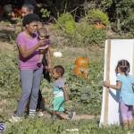 J&J's Pick Your Own Pumpkin Bermuda Oct 12 2018 (38)