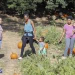 J&J's Pick Your Own Pumpkin Bermuda Oct 12 2018 (39)