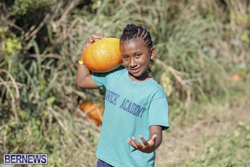 JJs-Pick-Your-Own-Pumpkin-Bermuda-Oct-12-2018-41