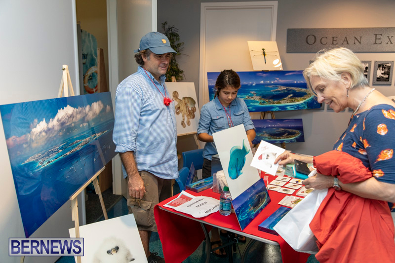 BUEI-Harbourside-Market-Arts-Craft-Festival-Bermuda-November-17-2018-9488