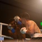 Bermuda Boxing Nikki Bascome Nov 2018 JM (11)