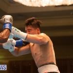 Bermuda Boxing Nikki Bascome Nov 2018 JM (14)