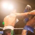 Bermuda Boxing Nikki Bascome Nov 2018 JM (19)