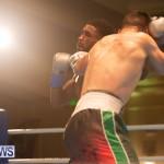 Bermuda Boxing Nikki Bascome Nov 2018 JM (21)
