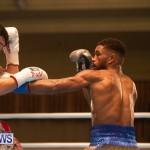 Bermuda Boxing Nikki Bascome Nov 2018 JM (24)