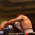 Bermuda Boxing Nikki Bascome Nov 2018 JM (45)