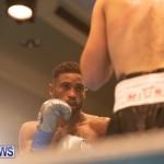 Bermuda Boxing Nikki Bascome Nov 2018 JM (5)